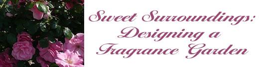 A Fragrance Garden: Sweet   Surroundings