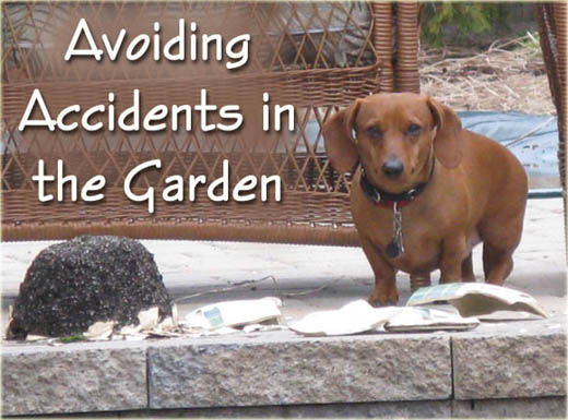 Avoiding Accidents in the Garden