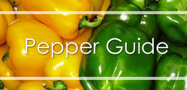 Pepper Guide
