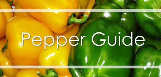Pepper Guide