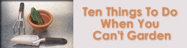 Ten Things To Do When You Can't Garden