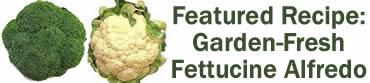 Fettuccine Alfredo from the Garden
