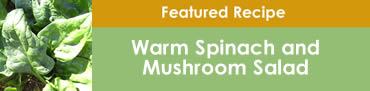 Warm Spinach and Mushroom Salad