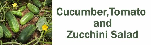 Cucumber, Tomato & Zucchini Salad