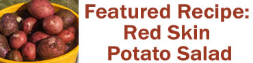 Featured Recipe: Red Skin Potato Salad