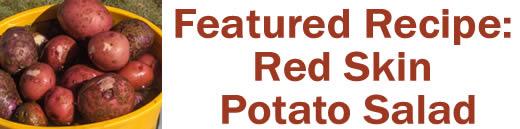 Featured Recipe: Red Skin Potato Salad