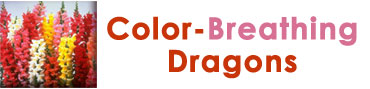 Color-breathing dragons