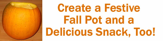Create a Festive Fall Pot and a Delicious Snack, Too!