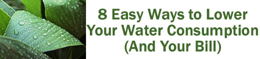 8 Easy Ways to Lower Your Water Consumption (and your bill!)